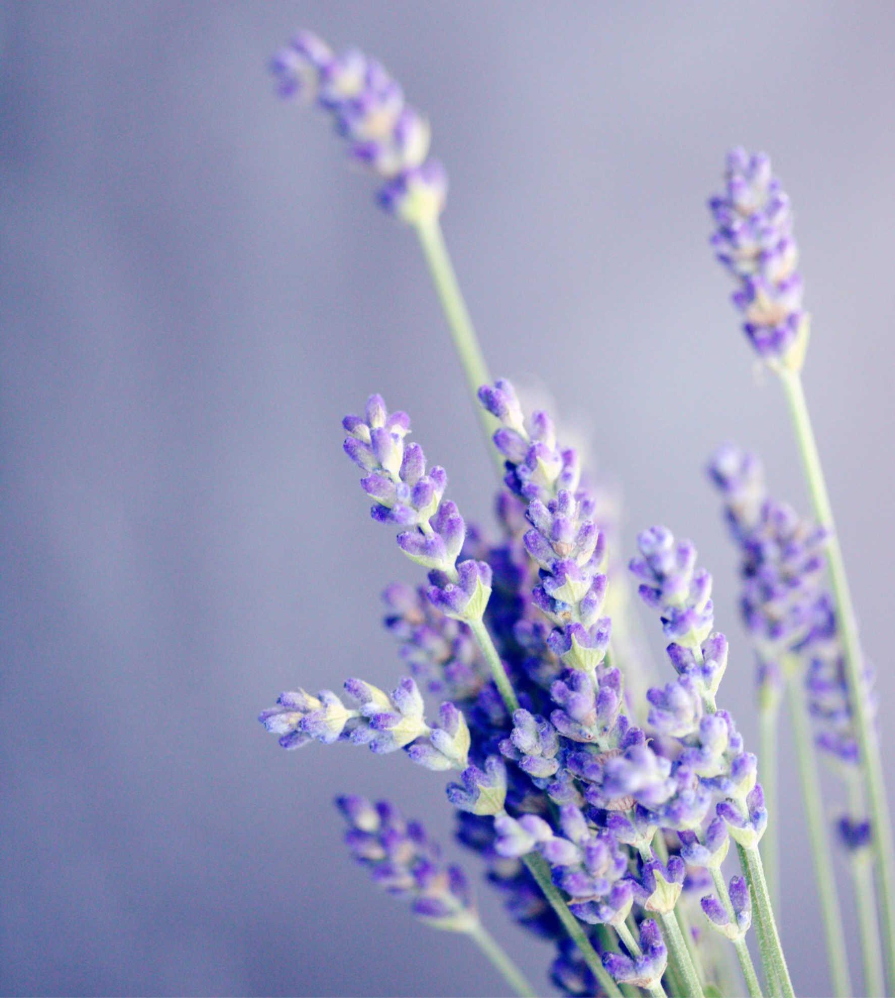 Doterra, aromatherapie